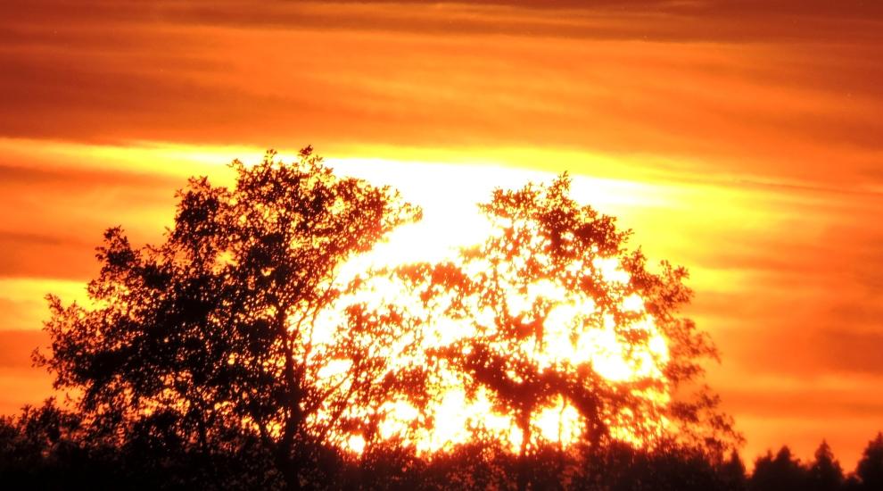 Abtsee Sonnenuntergang 6
