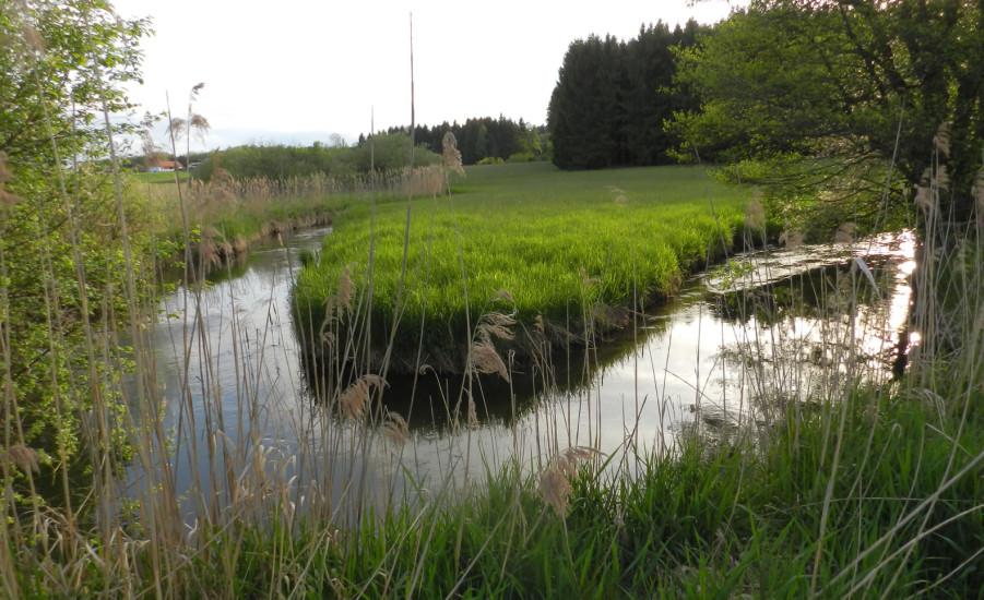 Bio-Heu-Region - schönste Fotos (11)