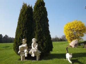 Pärchen im Garten