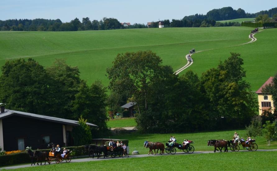 Pferdekutschengala 111