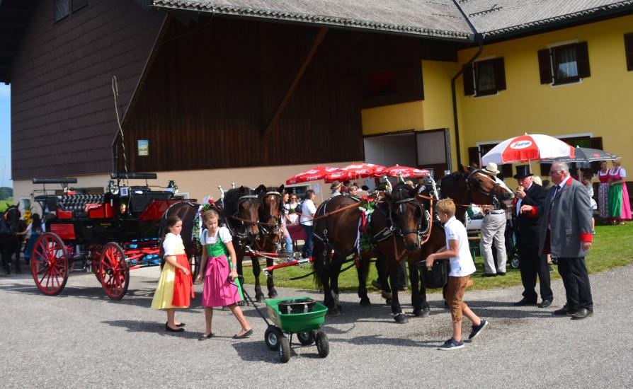 Pferdekutschengala 165