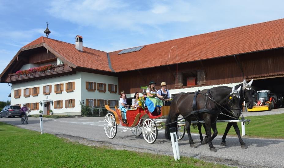 Pferdekutsche von Gabi Wimmer mit Königin der Bio-Heu-Region vor unserem Bauernhof