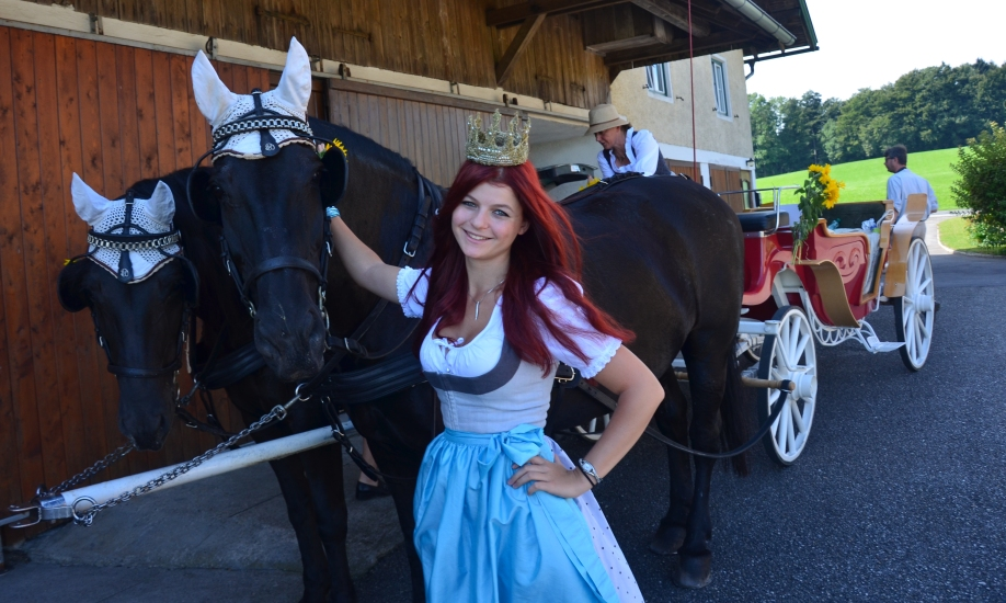 Pferdekutschengala 180