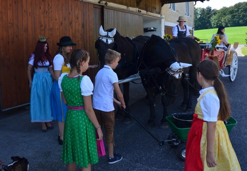 Pferdekutschengala 183