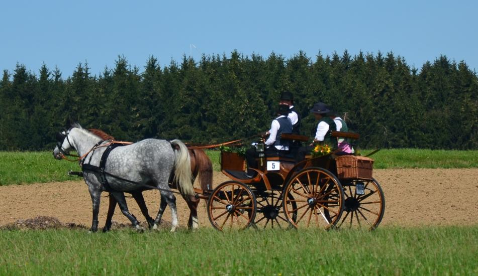 Teilnehmer der Pferdekutschengala bei ihrer Ausfahrt
