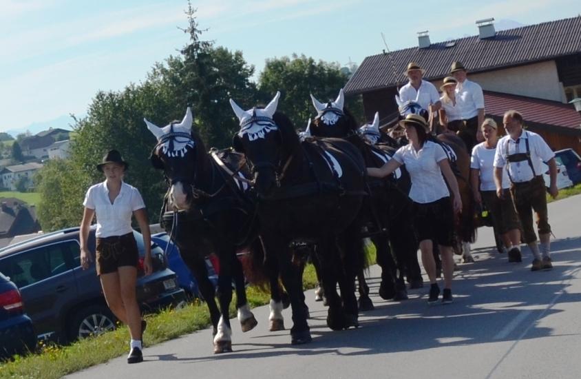 Martin Grundnter vom Eitzingerbauer lenkte wieder einmal das Achtergespann, welches jedes Jahr der Höhepunkt der Pferdekutschengala in Berndorf ist.