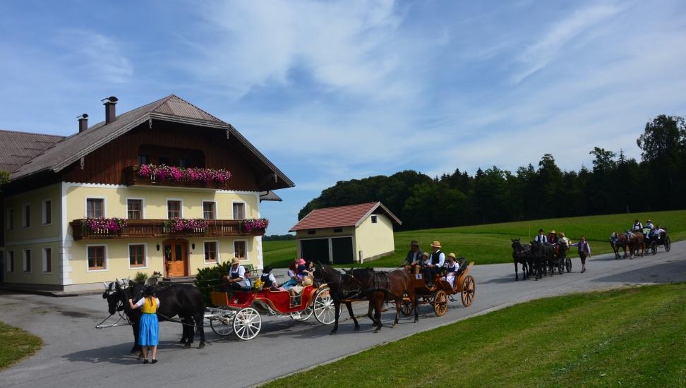Pferdekutschengala 91