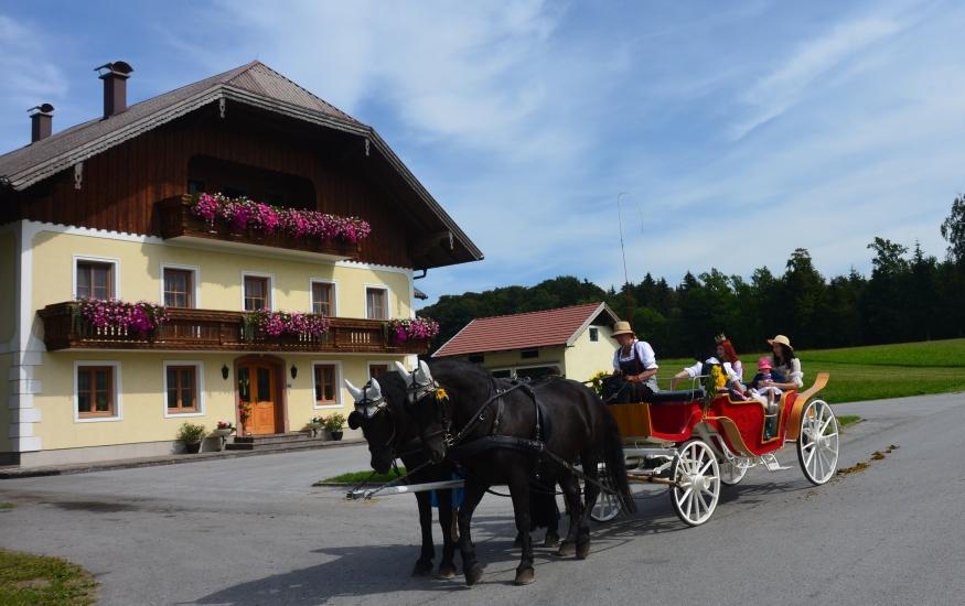 Pferdekutschengala 96