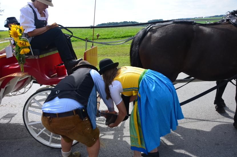 Pferdekutschengala 97