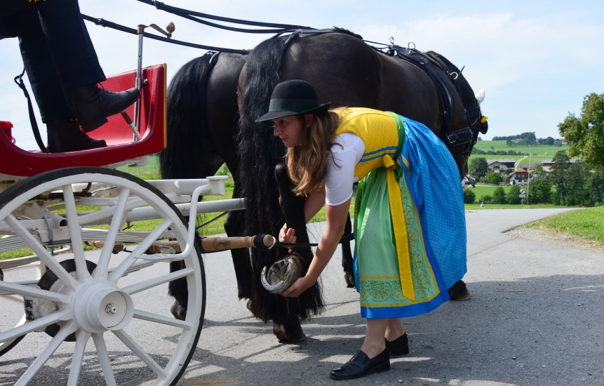 Pferdekutschengala 99