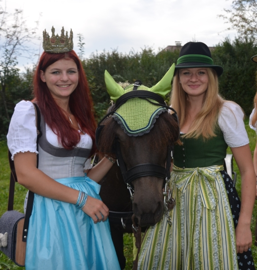 Pferdekutschengala Berndorf 2015 14