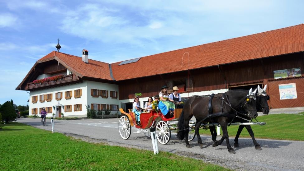 Pferdekutschengala Berndorf 2015 27