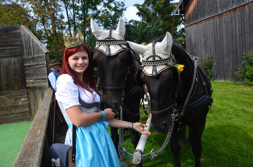 Pferdekutschengala Berndorf 2015 3