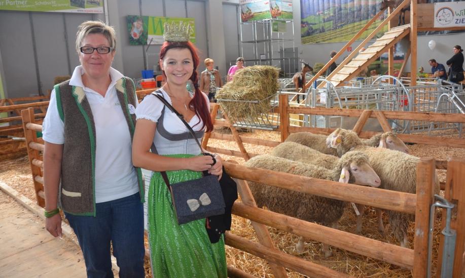 Schafwolle pur von Angela Rachl bestens verarbeitet