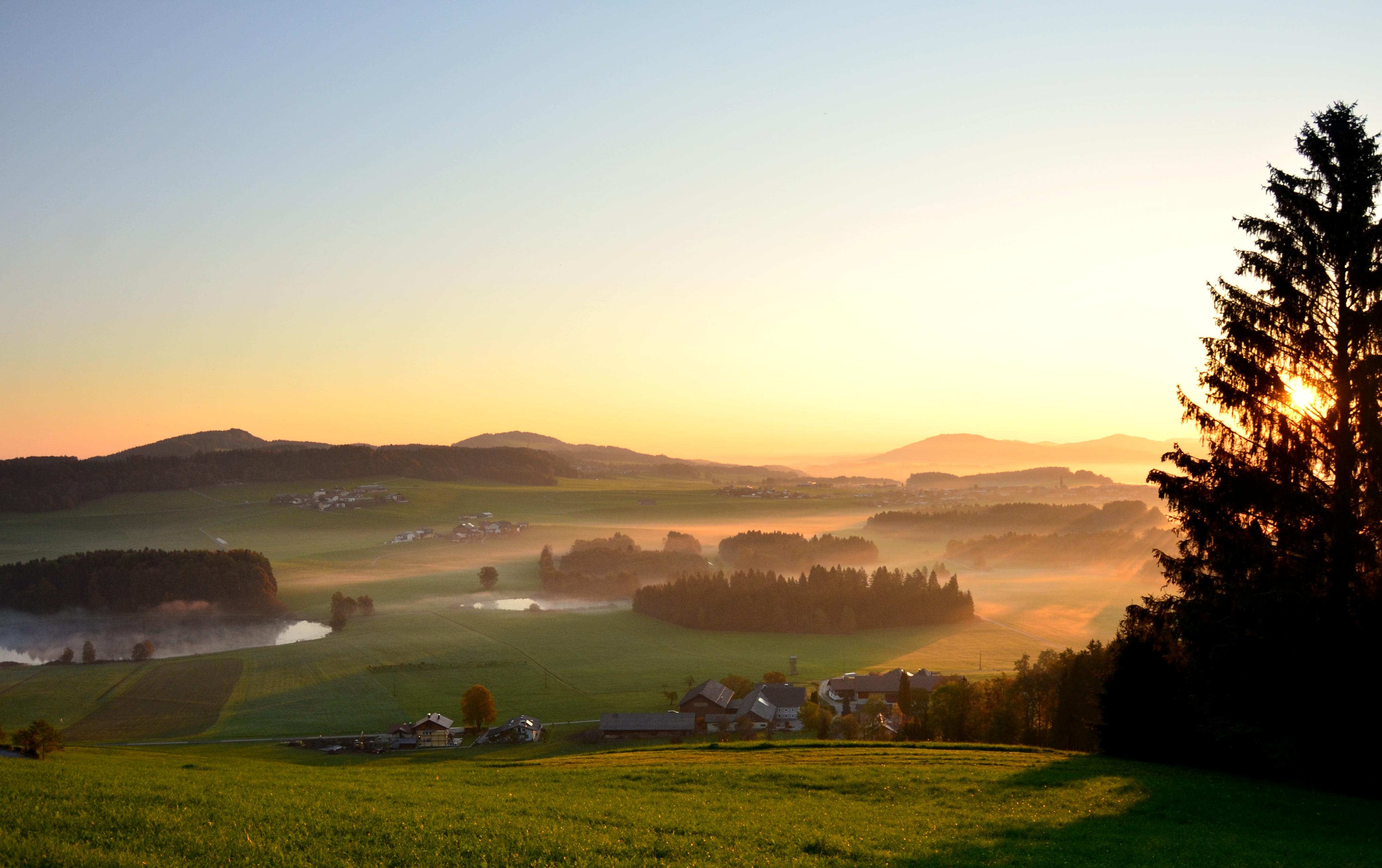 Kennenlernen Ravensburg - statyacup
