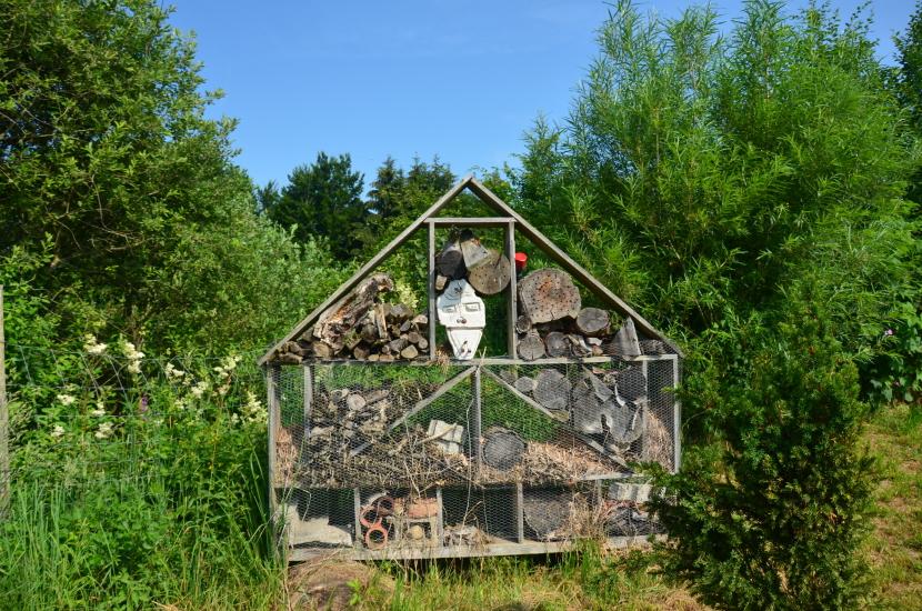 Thurerhofs Kräuterwelt 16