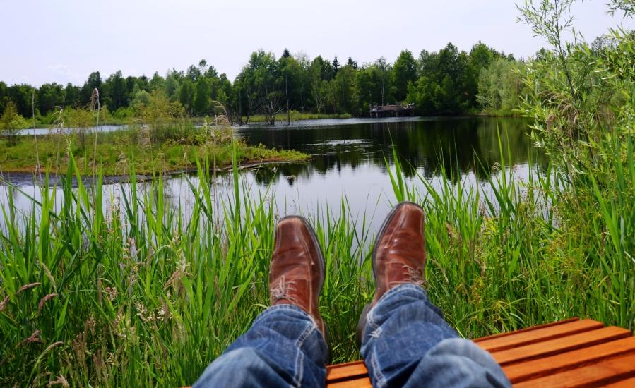 Stille, Ruhe und Natur genießen im Weidmoos