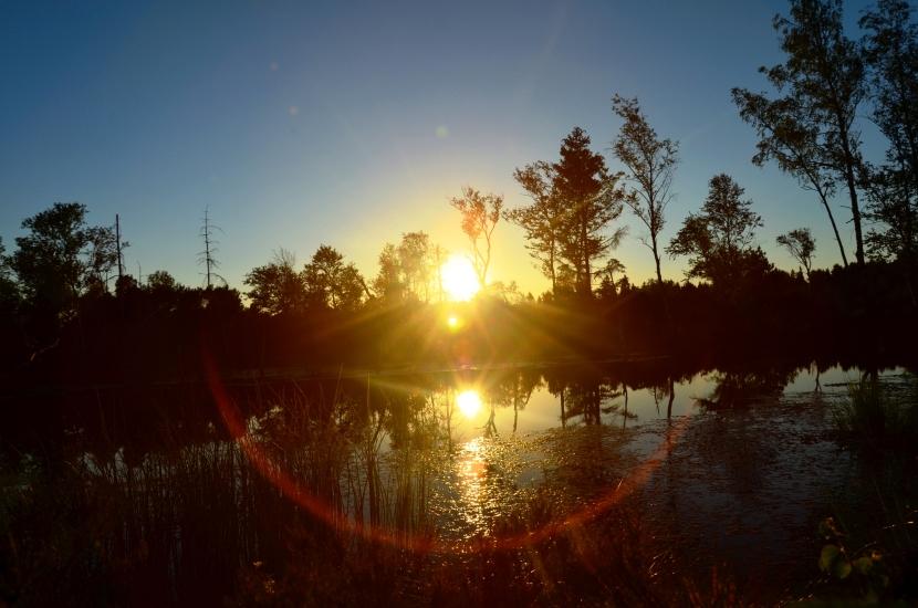 Sonnenuntergang im Wenger Moor