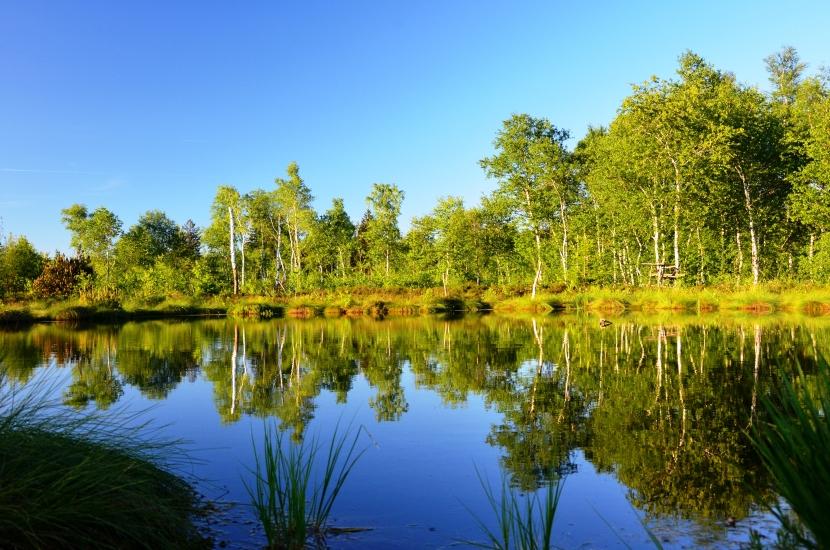 das schönste Naturparadies, dass ich bis jetzt kennenlernen durfte, es ist auch so versteckt, dass es fas keiner findet