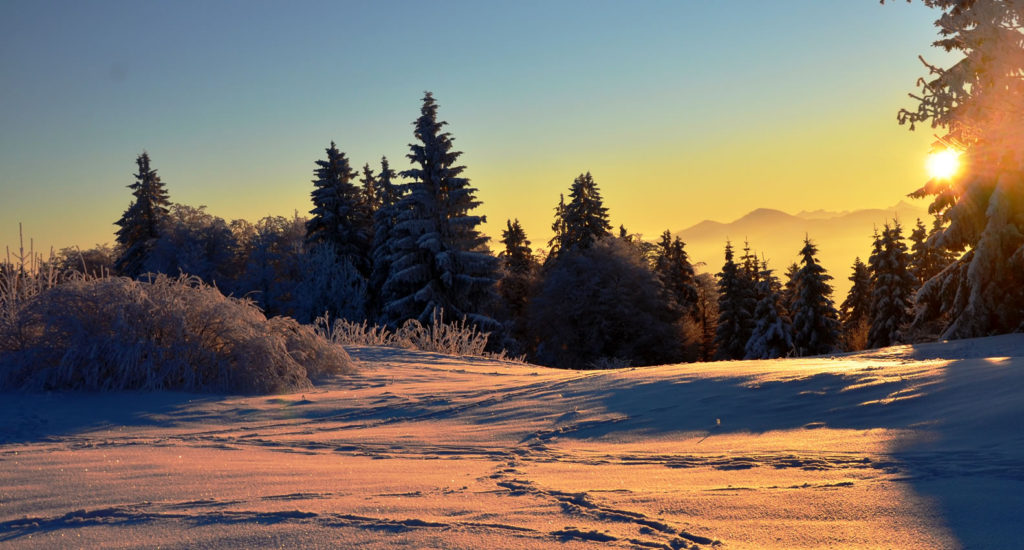 winter-am-gaisberg-2