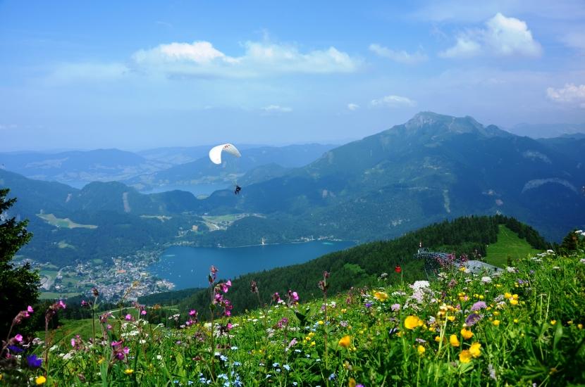 Lebensfreude gibt es vor allem beim betrachten von der Schönheit unserer Natur