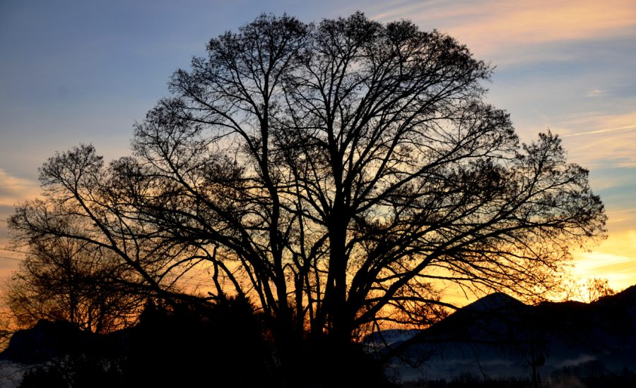 Sonnenaufgang beim Eugendorferberg am 13. 12. 2016